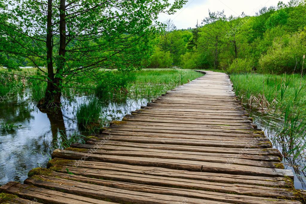 Фотообои Boardwalk in the park Plitvice lakes