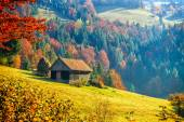 Fotografie Colorful autumn landscape in the mountain village