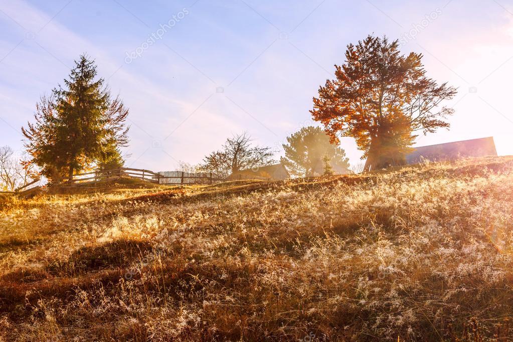 Morning in colorful autumn landscape in Romania