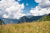 majestátní hory krajina.
