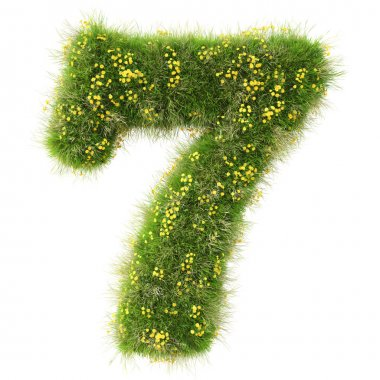 Number 7 from the green grass