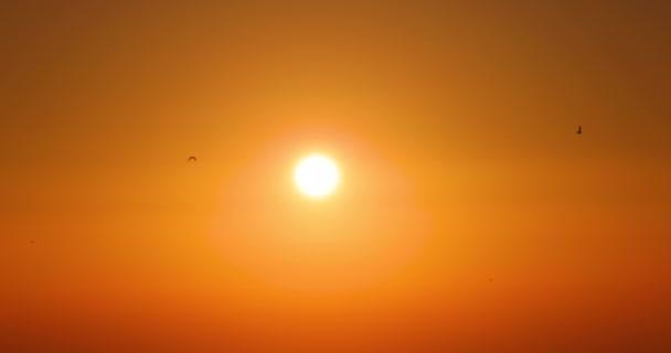 Východ slunce obloha a létající ptáci, 4K přírodní video. Stoupající slunce a ranní obloha pozadí.
