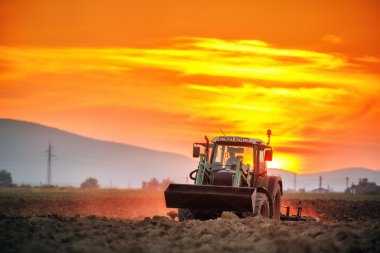 Tractor with cultivator handles field before planting, sunset sh