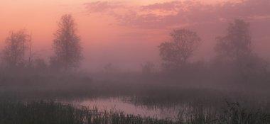 pink sunset under lake