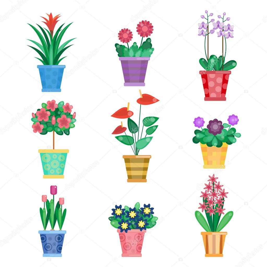 Jeu De Plante D Interieur De Fleurs Interieurs Maison Et De Bureau