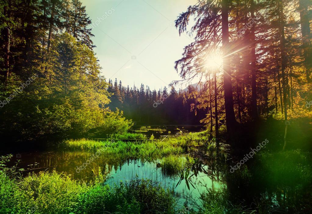 Beautiful Sunrise on lake