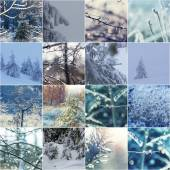 Photo Winter natute set