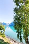 Lago in Norvegia