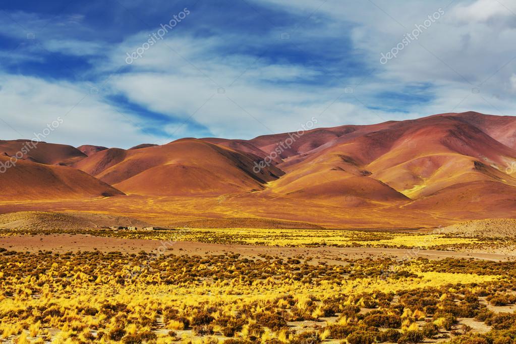 Landscape of Northern Argentina