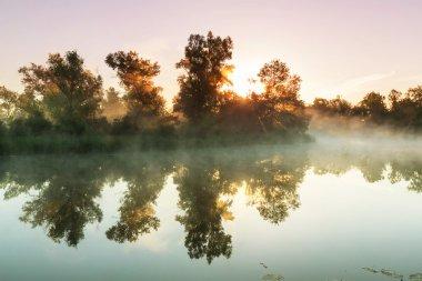 Morning river fog in summer season stock vector