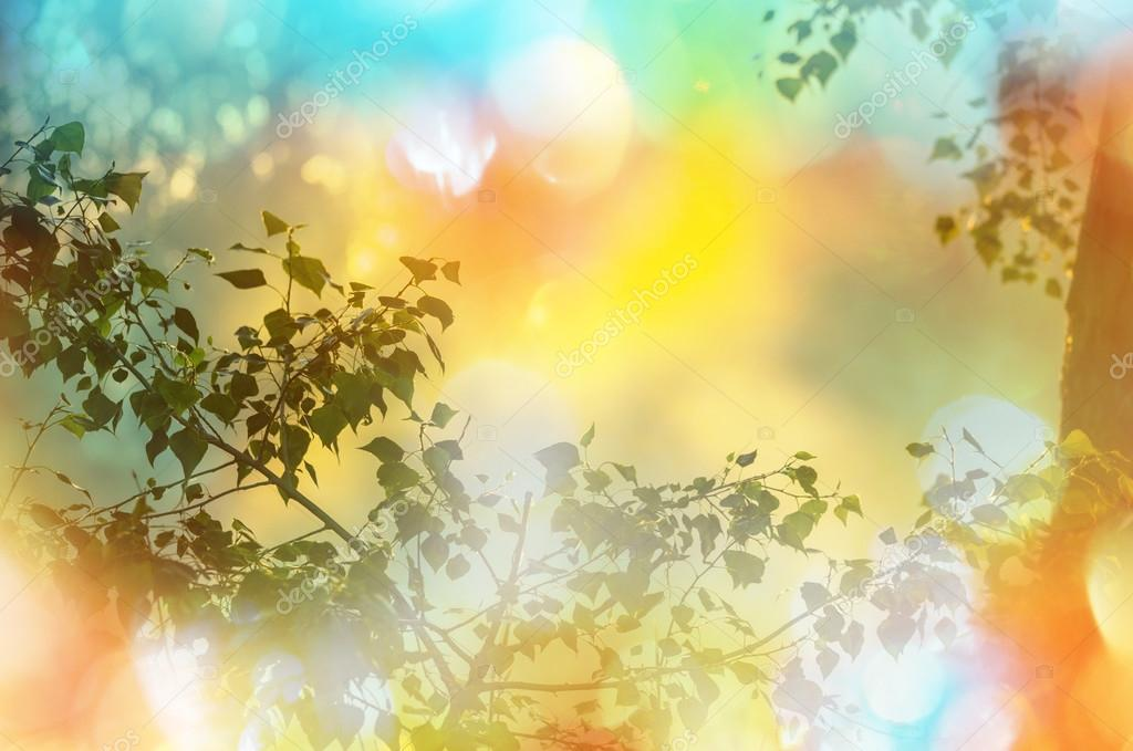 tree leaves background