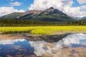Serenity lake in tundra