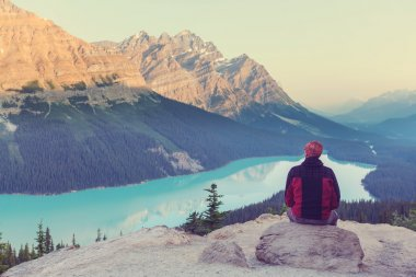 man looking at Peyto Lake