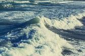 modré mořské vlny