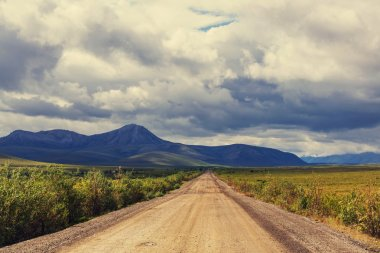 Polar tundra landscape