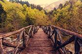malý dřevěný most