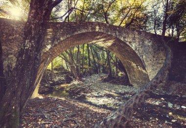Medieval Venetian bridge at Cyprus stock vector