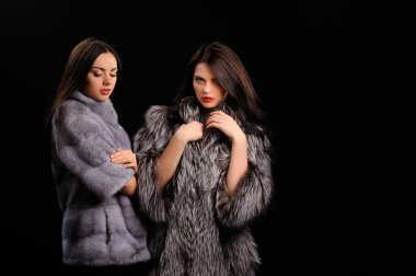 Beauty Fashion Model Girls in Blue Mink Fur Coat