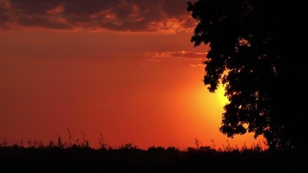 Siluety auta v západu slunce jízdy krajinou