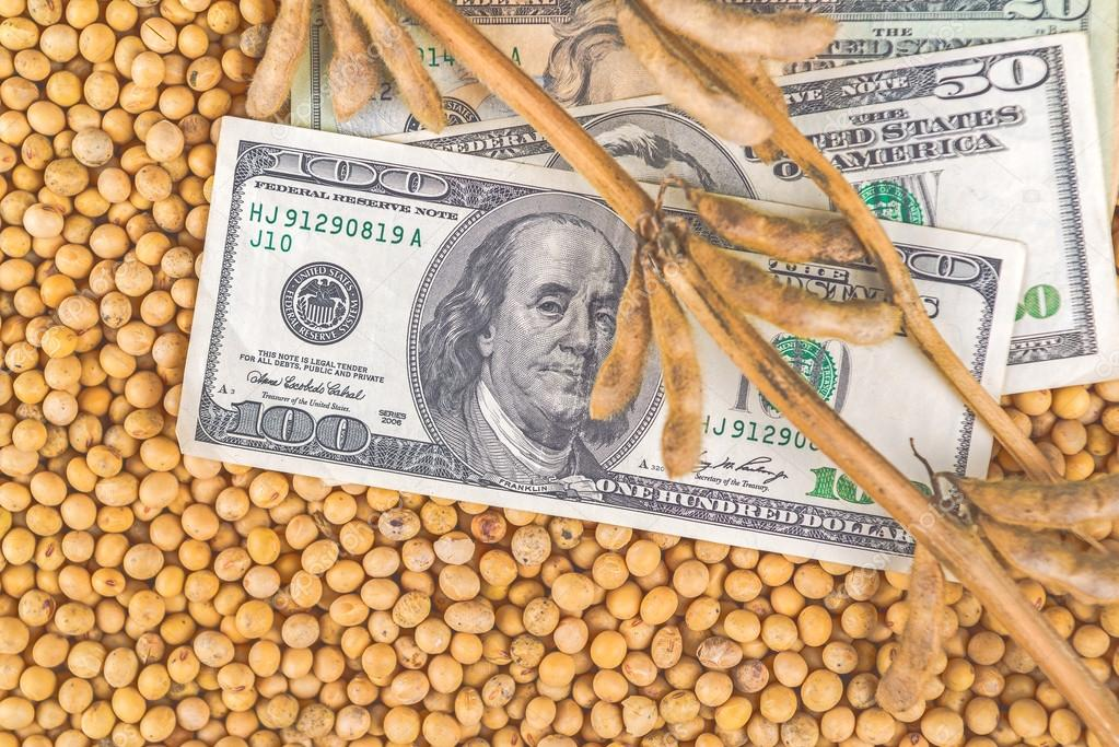 Profit from soybean cultivation