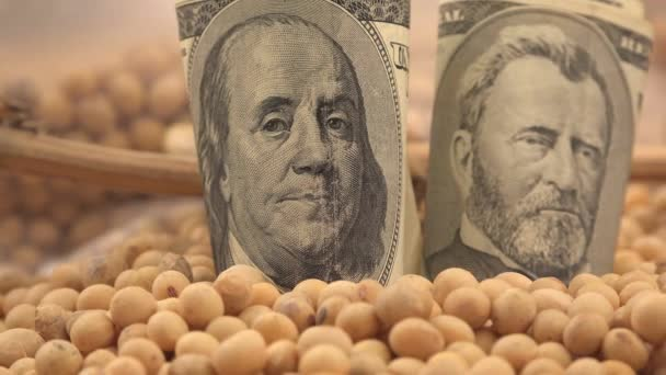 Making profit from soybeans harvest in USA