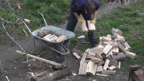 Dřevorubec načítání kolečko s dřevěnou protokoly