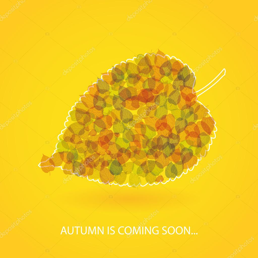 Autumn is Coming - Colorful Background