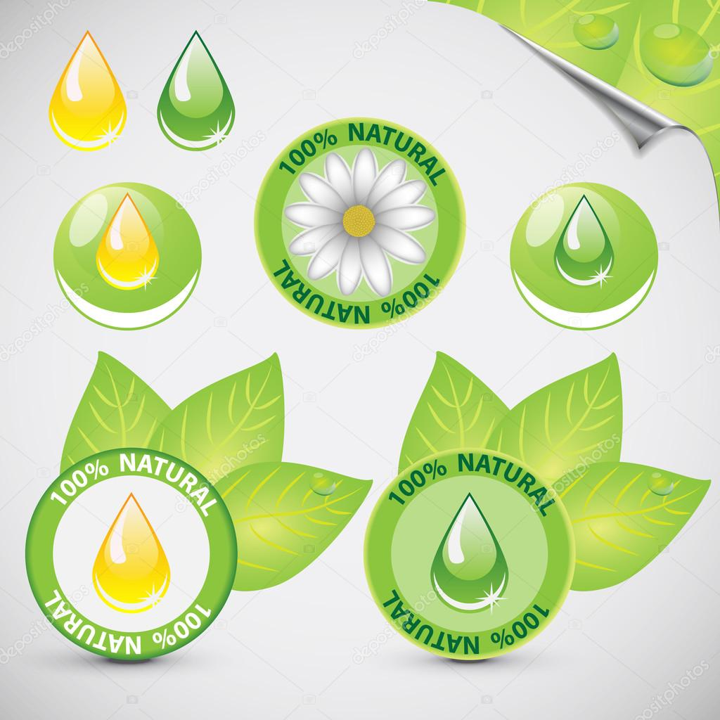 Green Shiny Eco Icon Label Sticker Collection