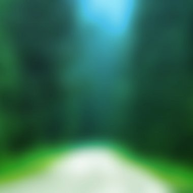 Abstract Background - Blurred Image - Green Forest