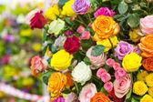 Fotografie Bouquet of fresh roses