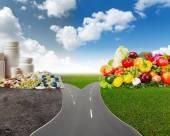 Fotografie Gesunde Lebensmittel oder medizinische Pillen