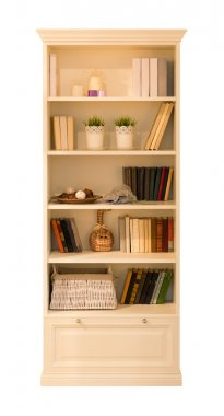 Wooden cupboard with books