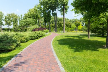 :Long curve alley in park