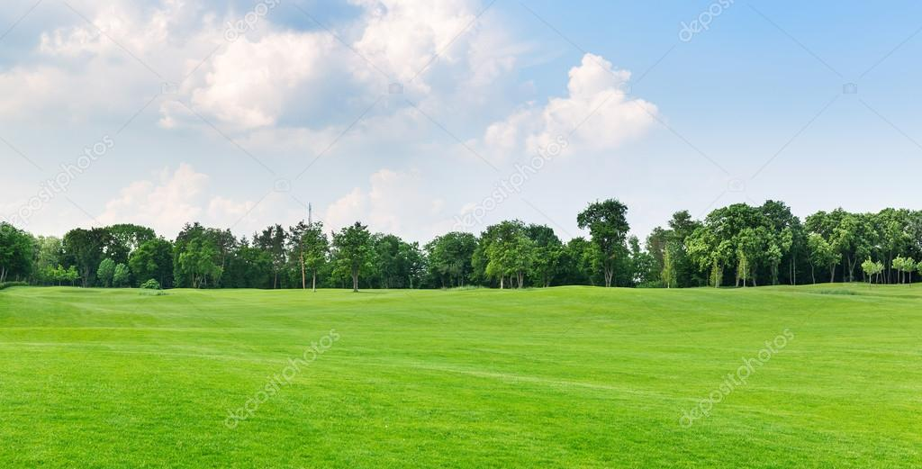 view of beautiful summer park