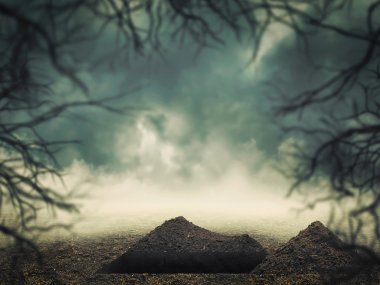 Open grave in the forest