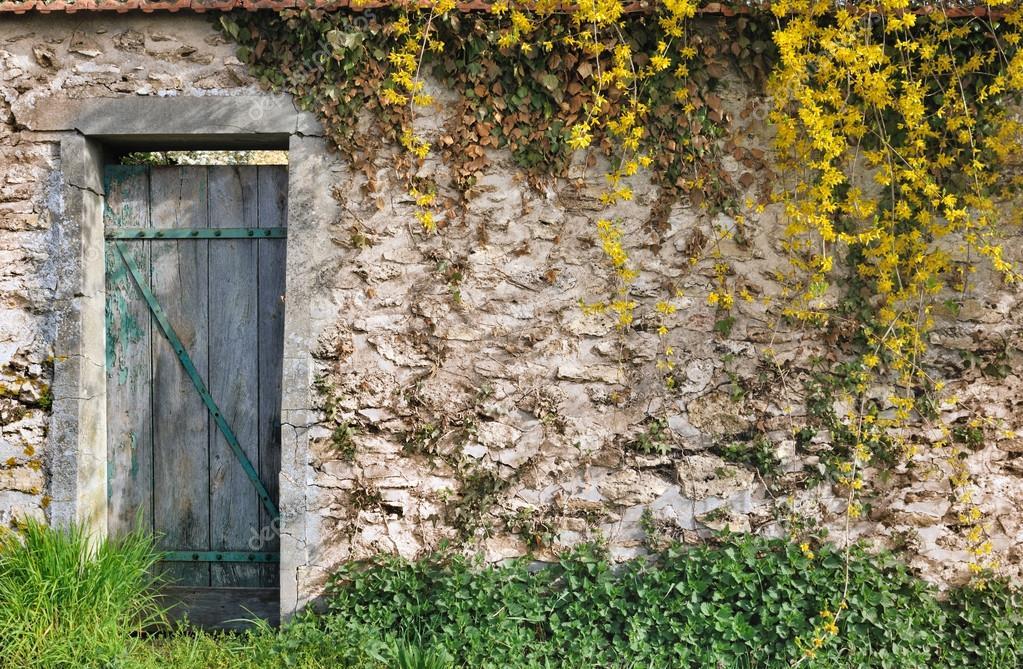 muro del jardín con vegetación — Fotos de Stock © sanddebeautheil ...