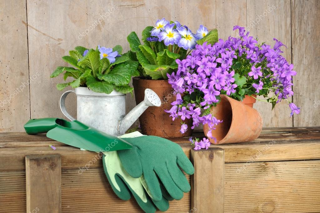 Flowers And Gardening Accessories U2014 Stock Photo