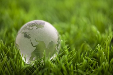 Crystal globe on green grass. World environmental concept.
