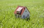 Malý domek na zelené trávě