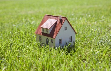 Little house on green grass