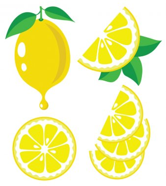 Collection of lemons vector illustrations stock vector