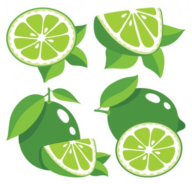 Limes vector illustration