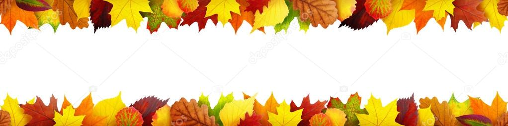 Seamless autumn leaves frame