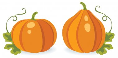 Two different pumpkins