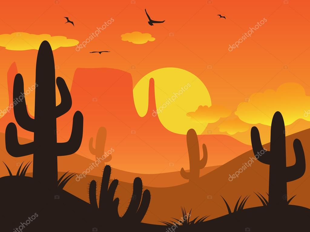 cactus desert on sunset