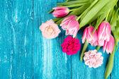 Bei tulipani rosa su fondo di legno blu