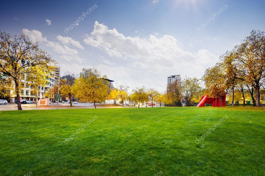 huge grassland in Seattle in sunny day
