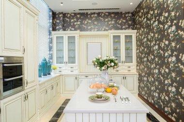 Modern kitchen interior and furnitures