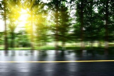 """Картина, постер, плакат, фотообои """"асфальтовая дорога с газонами под солнцем постеры"""", артикул 85152050"""