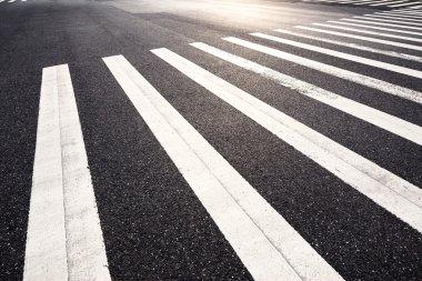 Zebra crossing in the morning city